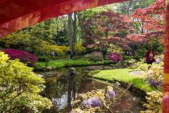 Japanse Tuin Clingendael 2014-02217 (Arie van Tilborg) Tags: japanesegarden denhaag thehague clingendael japansetuin clingendaelestate landgoedclingendael