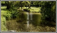 P1200060 Beddington Park Surrey