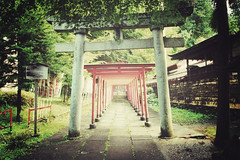 Takayama + Torii | Japan, July 2014 (Sebastien BERTRAND) Tags: japan canon streetphotography streetphoto takayama torii japon photoderue  toriigates eos40d canon40d fotomato sebfotomato sbastienbertrand sebastienbertrand