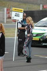 BTCC Snetterton 2014 (Stono) Tags: lycra gridgirls