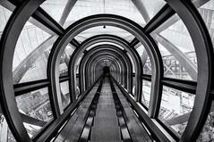 Skybuilding Osaka (Gerardo Silveyra) Tags: trip travel sky blackandwhite white black japan photography nikon   osaka fotografia japn  skybuilding nikond300 {agreguesuspalabrasclavede