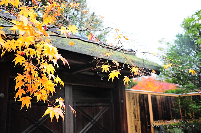 2013修學院離宮 (14).jpg