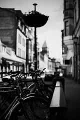 walk about Lund 21 (furrycelt) Tags: street city blackandwhite lund monochrome bicycle 50mm nikon europe sweden sigma sidewalk bicyclerack d600 sigma50mmf14 sigma50mmf14exdghsm