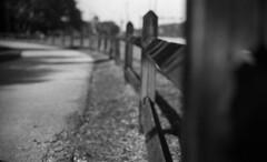 Wooden Fence -- (leicaflex sl) (PositiveAboutNegatives) Tags: leica blackandwhite bw slr film analog vintage fence 50mm dof depthoffield sl summicron coolscan leicaflex foma fomapan100 aristaedu leitz 50mmsummicron 11228 leicar leicaflexsl leits nikon9000scanner blackandwhitefilmphotography leicafilmphotography freefilmimages freefilmpictures