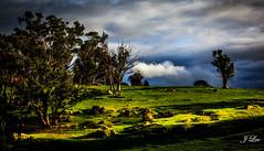 Shiny Shadow (**James Lee**) Tags: shadow sun tree clouds landscape shiny rocks jameslee