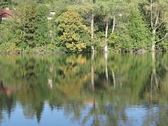 IMG_9106 (germancute ***) Tags: germany landscape deutschland thüringen pond thuringia teich landschaft germancute
