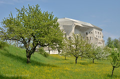 Trees in the grounds of the Goetheanum, Dornach, Solothurn, Switzerland (Roberto Herrett) Tags: park blue trees green horizontal gardens garden switzerland spring nobody grounds solothurn stockphoto goetheanum dornach rherrettflk