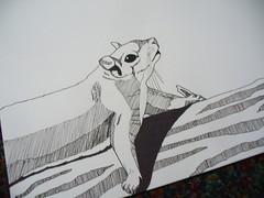 squirrel experiment (sneezerville) Tags: tree coffee animal illustration watercolor paper sketch squirrel tea drawing marker sharpie graphite crayola micron