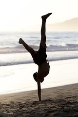 Secuencia Pino 4 de 6 - Playa de los Lances - Tarifa (DGrimaldi) Tags: sunset sea espaa david beach canon contraluz atardecer mar playa andalucia pino cdiz franco tarifa grimaldi loslances playaloslances 5dmarkiii ef70200mmf28lisiiusm dgrimaldi
