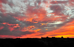 Fiery Sunset over Woodley Park (districtinroads) Tags: city sunset rooftop weather clouds washingtondc dc washington districtofcolumbia view cloudy district capital columbia adamsmorgan fiery woodleypark fierysunset lanierheights cloudhighlights 2707rooftop
