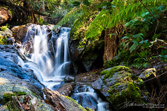 Melbourne (Qicong Lin(Kenta)) Tags: mountain color colour water landscape waterfall nikon view natural australia melbourne victoria vic geography lin d600 qicong dendenong qiconglin