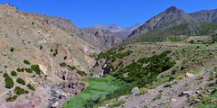 Maroc - La grande traverse du Haut-Atlas - Juillet 2014 (StephanPeccini) Tags: montagne trek maroc hautatlas