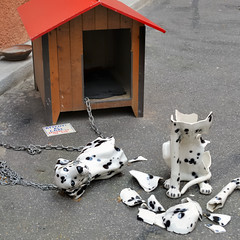 Beware of the dog - Attenti al cane - art gallery, Roma Tiburtina (edk7) Tags: italy dog rome roma broken ceramic italia artgallery shattered dalmatian lazio 2010 d300 tiburtina edk7 sigma2470mm128dghsmex