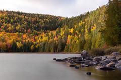 Autumn lake (menu_c) Tags: lake autumn 10stop parcdes7chutes lacguy quebec