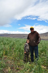 Cover Crops on Dryland Wheat? Challenge Accepted. (NRCS_Oregon) Tags: usda nrcs natural resources conservation service soil health the dalles wasco county cover crops oregon sensors dryland wheat noah williams regenerative agriculture