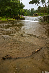 Small Waterfall (Brij Naik) Tags: small waterfall road water trees forest jungle area wood stick smooth flow landscape nature beautiful serene pleasant sony sonyalpha mirrorless kitlens dang gujarat india outdoor travel