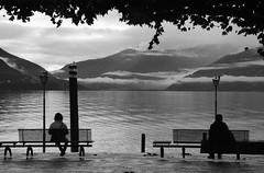 Ascona (Switzerland) - Lago Maggiore (Danielzolli) Tags: schweiz suisse svizzera svizra suiza suia switzerland swiss sveits szwajcaria svycarsko svajciarsko elvetia helvetia isvicre zvicer ticino tessin lagomaggiore see lago lac lgh lake jezero jezioro ezero liqeni  bank bench ascona