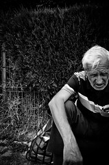 Trying to Remember How I Got Here (stimpsonjake) Tags: nikoncoolpixa 185mm streetphotography bucharest romania city candid blackandwhite bw monochrome oldman hedges depressed homeless