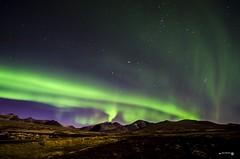 Aurora Borealis over Rondane Nationalpark - Explored 15-10-2016 (Anne Rusten) Tags: nikon norway nature nationalpark northernlights auroraborealis rondane rondanenationalpark norge oppland annerusten