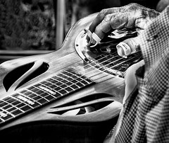 Picker (Windswept Photography) Tags: musician bluegrass