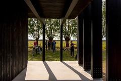_DSC6734 (durr-architect) Tags: info centre zwin heartland belgium architecture cousse goris nature park wood structure border aday16 group area green trees