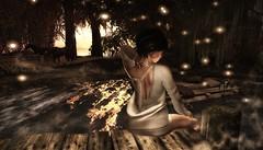 Serene (Spirit Eleonara) Tags: second life photography light shadow colour quiet nature landscape