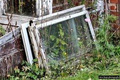 Lincolnshire garden greenhouse (SteveH1972) Tags: window windowframe outside outdoors outdoor uk england greenhouse garden britain british europe canon700d canon70200lf28usmnonis canon70200lf28usm 70200 llens