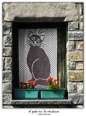 el gato en la ventana (wuploteg1) Tags: altas altoaragn altoaragon aragn aragon aragones aragons boletania boltaa boltana boltania boltanya casa eras espaa espania espanya huesca oscense pirineo pirineos pyrenees sobrarbe spain picardo gato ventana cat window