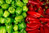 Red and green mix of the freshest peppers (xTeraphim) Tags: plant pepper mix market green red organic vegetable healthy fruit fresh cooking nature raw isolated flavor color freshness hot wallpaper kitchen hottest mexican aroma habanero scoville closeup funny salsa