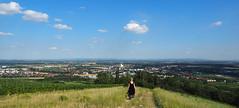 Eichkogel-Naturschutzgebiet Mdling Austria (arjuna_zbycho) Tags: eichkogel eichkogelnaturschutzgebiet mdling wandern berggipfel hgel niedersterreich naturschutz wienerwald trockenrasengebiet ella