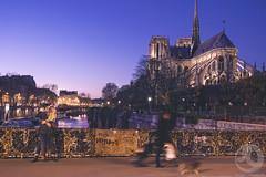 Paris, France (Juan Len Villarroya) Tags: nikon nikond4s nikon1635f4 francia france paris notredame sena riosena puente beso kiss novios amor love bridge ciudad city atardecer sunset arquitectura architecture