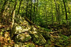 LRa05-24-16k-IMG_2453_54_55HDR- (Glotzsee) Tags: nature virginia blueridgeparkway blueridgemountains blueridge railroadtracks hdr glotzsee