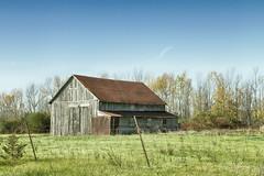 Old Rusty (gabi-h) Tags: barn rustyroof architecture fence fencefriday sky grass rural rustic princeedwardcounty gabih trees october autumn fall