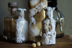 Salted antique bottle and lizard eggs (Brother O'Mara) Tags: egg eggs lizardegg lizardeggs bottle bottles salt salted antiquebottle antiquebottles glass