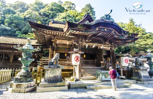 Tour Nhật Bản đón năm mới giá chỉ 28,9 triệu đồng