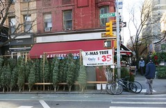 Monday Colours - Christmas on New York's Sidewalks (Pushapoze (not my president)) Tags: newyorkcity sidewalk firtrees arbresdenoel christmastrees trottoir