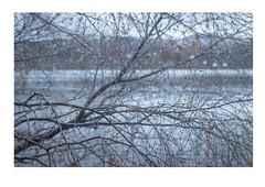 raindrops2 (catt1871) Tags: lakedistrict lakes landscape autumn derwent brandelhow photomerge