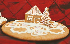 Christmas cookie with house i. (.::Danka::.) Tags: christmas cooking food house tree decoration cookie bread sweet