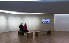 Watchin.jpg (Malhayita) Tags: museum instalation museo ciudaddemexico df art arquitetecture arquitectura estructura screen watching people personas
