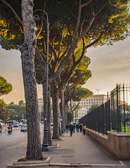 Sunset streets (balintmolnar1) Tags: rome beautiful streetphotograhpy lumixgh4 gh4 canon colosseum pinokio fountain river fruits guard sunset stairs bnwphotography motor vespa reflection