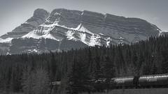 Classic Canada (Tinker & Rove) Tags: tunnelmountain rockymountains transcanada banff canada canadian landscape forest evergreen pine fir cnrail train mountain snow banffnationalpark alberta