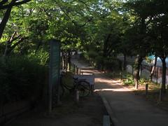 IMG_3935