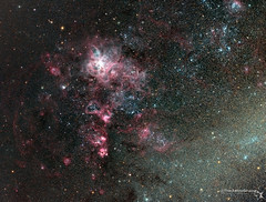 NGC2070, Tarantula Nebula (TheAstroShake) Tags: spider space nebula astrophotography tarantula astronomy lmc dso