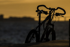 Watching A Sunset (Mabry Campbell (2nd Account)) Tags: sunset bike bicycle silhouette canon photography eos coast march photo skne europe photographer image sweden coastal photograph boardwalk 100 sverige february scandinavia campbell malm malmo 2012 fineartphotography oresund mabry f35 200mm architecturalphotography vstrahamnen skane commercialphotography editorialphotography architecturephotography ef200mmf28liiusm westernharbor editorialphotographer commercialphotographer canonef200mmf28liiusm fineartphotographer canoneos5dmarkii architecturalphotographer houstonphotographer architecturephotographer sec mabrycampbell february262012 mabrycampbellcom 201202262716