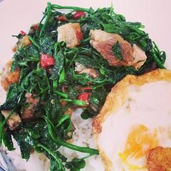 หมูกรอบผัดผักหวาน ไข่ดาว  แม่เจ้าโว้ย มันอร่อยมากๆ น้ำตาจะไหล ติดใจเลย คงต้องมา อตก. บ่อยขึ้นละ อาหารน่าทานๆทั้งสิ้น!!!