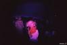 coprolitos especial boda (araceli.g) Tags: wedding lomo y maria boda colorsplashflash fisheye salamanca javi analogic araceli analogico gilabert toycamara coprolitos fisheyen2 amorporunpimiento