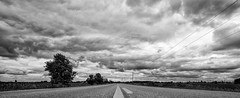 Looking back (VNR Photography) Tags: road old bridge blackandwhite ontario canada tree clouds barn canon countryside farm country hills rolling countryroad canoneos5dmarkii andrevonnickisch