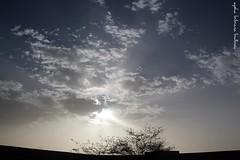Desierto de Auserd Tiris (Aysha Bibiana Balboa) Tags: marruecos ayshabibianabalboapaisajes desiertodeauserdtiris