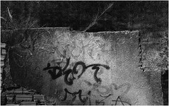 16CAM00829 (wilson leonel) Tags: world street camera old city travel trees light brazil vacation sky people urban blackandwhite bw sun white holiday building minasgerais eye art water beauty car sepia architecture clouds photography high nice interesting day shot image time object explorer creative illumination makeup surreal reflect single surprise cult duotone belohorizonte tones effect citizen brightness wilmd wilsonleonel