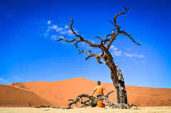 Dead tree trunk, Dead Vlei, Namibia (jbdodane) Tags: africa day622 deadvlei desert dry dunes jb namibnaukluft namibnaukluftpark namibia pan petrified sand sanddunes sesriem sossusvlei tree trunk vlei freewheelycom jbcyclingafrica